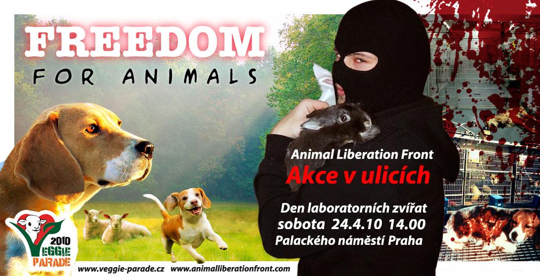 24_4_freedom